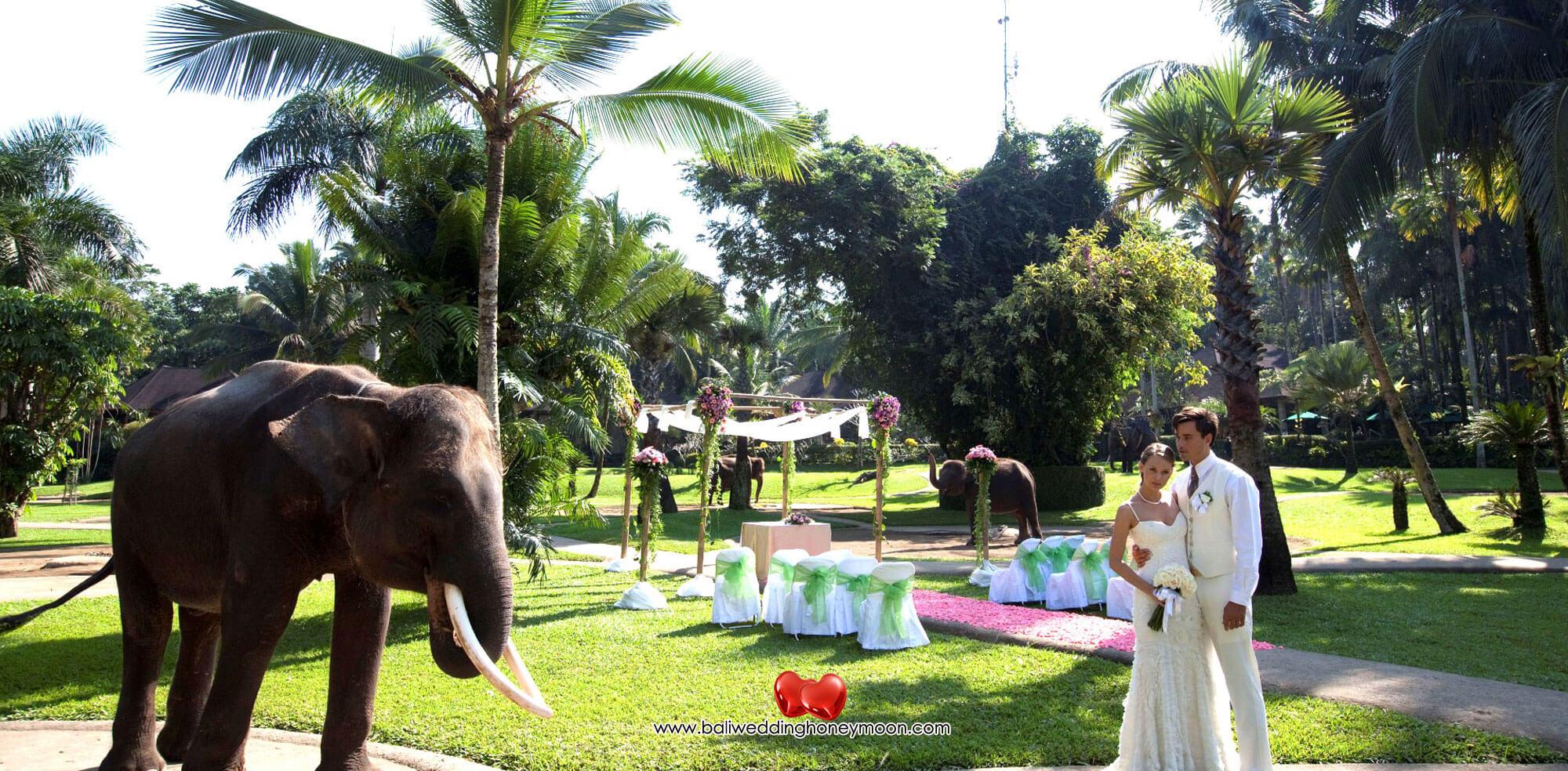masonbalielephantwedding-uniquebaliwedding-baliweddinghoneymoon-baliweddingorganizer-baliweddingplanner-baliweddingpackage5